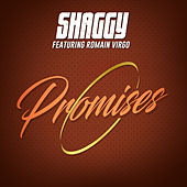 Promises von Shaggy