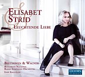 Leuchtende Liebe by Elisabet Strid