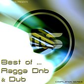 Best of Ragga Drum & Bass / Dub by Various Artists