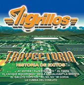 Play & Download Trayectoria by Los Tigrillos | Napster
