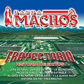Play & Download Trayectoria by Banda Machos | Napster