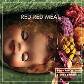 Play & Download Bunny Gets Paid by Red Red Meat | Napster