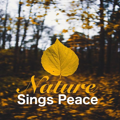 Nature Sings Peace by Echoes of Nature