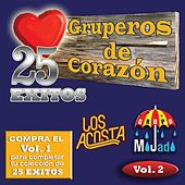 25 Exitos Vol. 2 by Various Artists