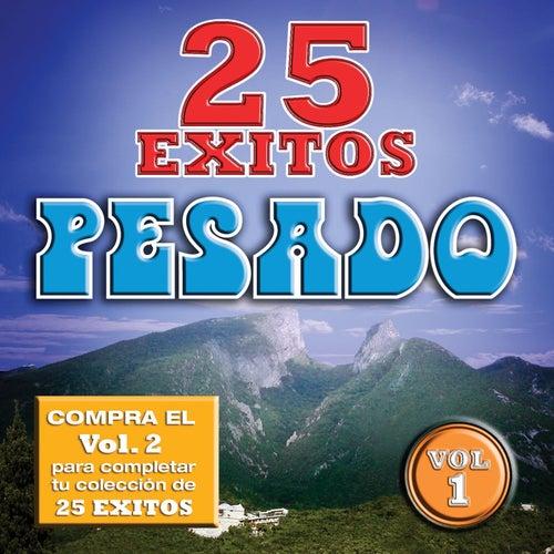 Play & Download 25 Exitos Pesados by Pesado | Napster