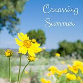 Caressing Summer by Nature Sounds
