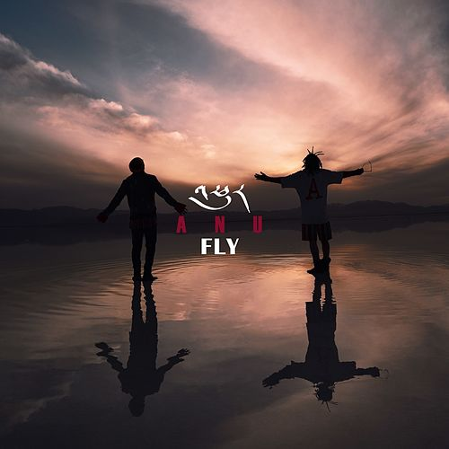 Fly by Anu