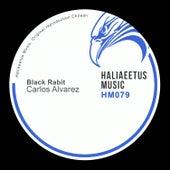 Black Rabit by Carlos Alvarez