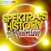 Spektra's History, Vol. 6 - 9th Anniversary by Various