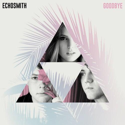 Goodbye von Echosmith