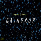 Raindrop by David Correy