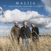Instinct by Malija