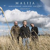 A Wing and a Prayer by Malija