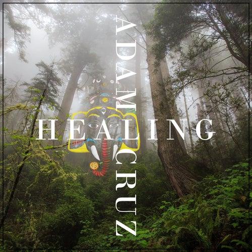 Healing by Adam Cruz