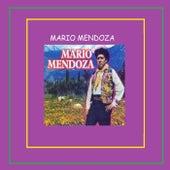 Mario Mendoza by Mario Mendoza