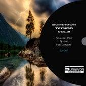 Survivor Techno, Vol. 2 by Various