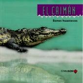 El Caiman, Sones Huastecos von Various Artists