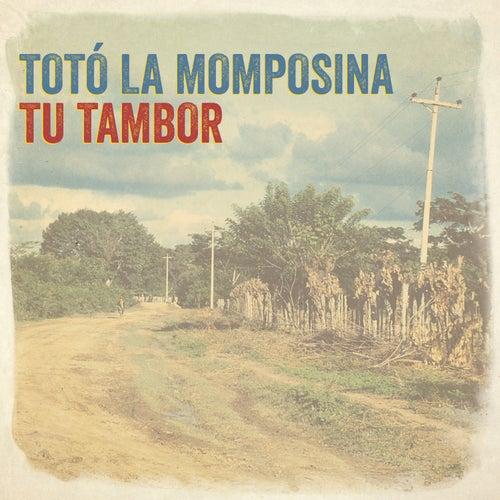 Tu Tambor by Toto La Momposina