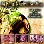 Ja heut' Nacht Josefine by Various Artists