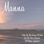 Only by the Grace of God Are We Not a Bunch of Flakes Anymore by Manna