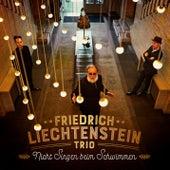 Nicht Singen beim Schwimmen (Radio Edit) by Friedrich Liechtenstein Trio