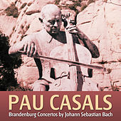 Play & Download Conciertos De Branderburgo Por La Philadelphia Symphonic Orchestra Dirigida Por Pau Casals by Pau Casals | Napster