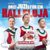 Halleluja by Die Jungen Zillertaler