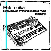 Elektronika 01 by Various Artists