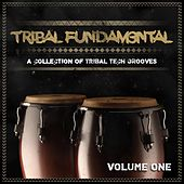 Tribal Fundam3ntal, Vol. 01 by Various Artists