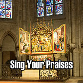 Sing Your Praises by Christian Hymns