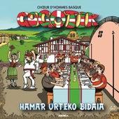 Hamar urteko bidaia de Gogotik