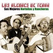 Sus Mejores Norteñas y Rancheras by Los Alegres de Teran