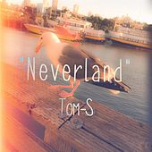 Neverland by The Toms