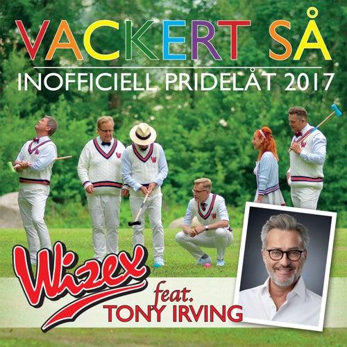 Vackert så (feat. Tony Irving) (Inofficiell Pridelåt 2017) by Wizex