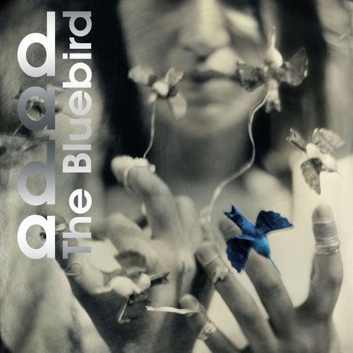 The Bluebird by Dada