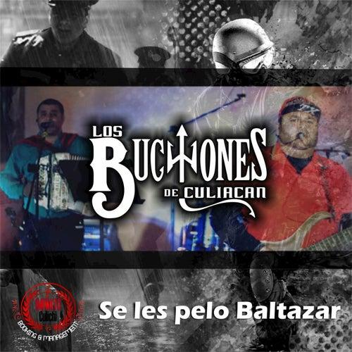 Se les Pelo Baltazar by Los Buchones de Culiacan