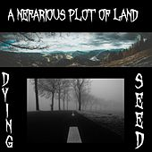 A Nefarious Plot of Land by Dying Seed