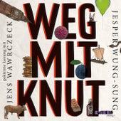 Weg mit Knut! (Gekürzte Lesung) von Jesper Wung-Sung