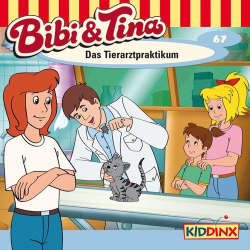 Folge 67: Das Tierarztpraktikum von Bibi & Tina