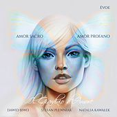 Amor Sacro Amor Profano von Dawid Biwo