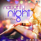 Naughty Party Songs Collection: Naughty Night by Various Artists