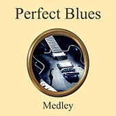 Perfect Blues Medley: Good Morning Blues / Fine and Mellow / Original Jelly Roll Blues / Beale Street Blues / Nobody Knows You When You're Down and Out / Potato Head Blues / Backwater Blues / Stormy Weather / Fats Waller's Original E-Flat Blues / Blues I de Various Artists