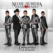 No Me Hubiera Enamorado by Cornelio Vega y su Dinastia