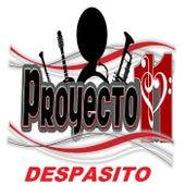 Despasito de Proyecto 11