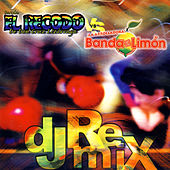 DJ Remix by Various Artists