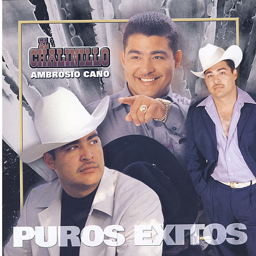 Play & Download Ambrosio Cano by El Chalinillo | Napster