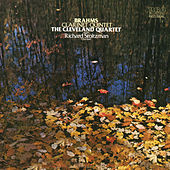 Brahms: Quintet in B Minor for Clarinet and Strings, Op. 115 by Richard Stoltzman