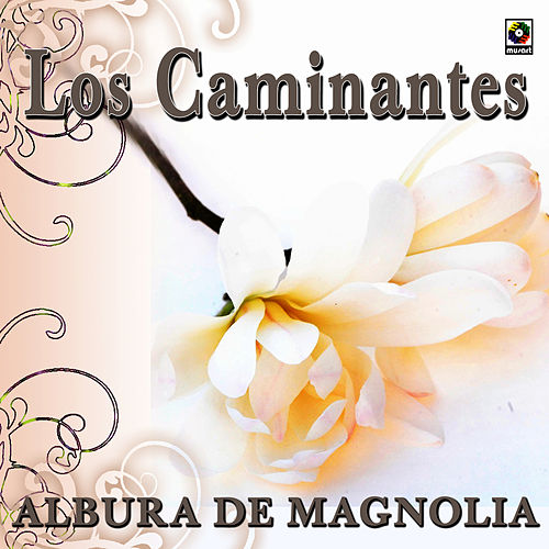 Play & Download Albur De Magnolia by Los Caminantes | Napster