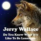 Do You Know What It's Like to Be Lonesome by Jerry Wallace
