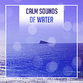 Calm Sounds of Water – Nature New Age Vibes, Healing Therapy, Easy Listening, Stress Relief by Nature Tribe